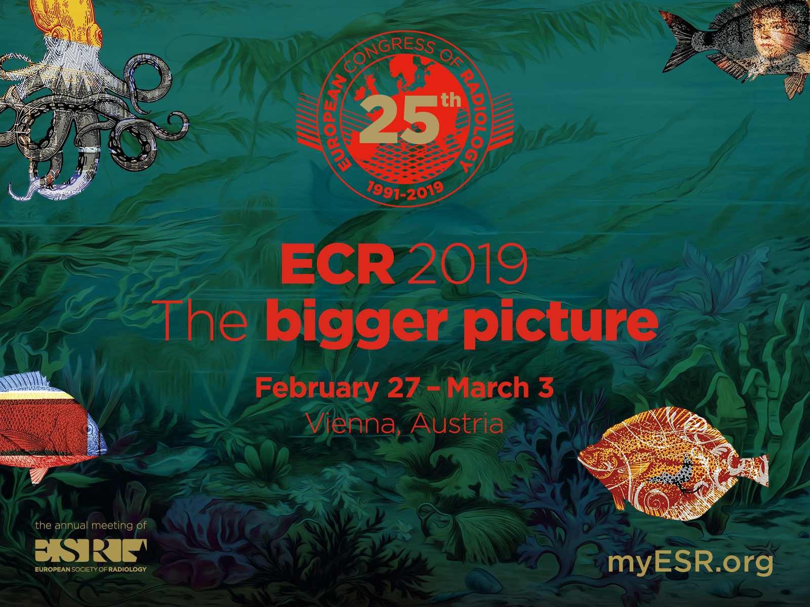 Physicists' Activities during ECR2019 in Vienna